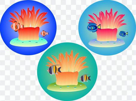 Sea anemone & tropical fish icon set