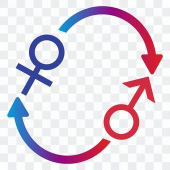 性別圖標和箭頭
