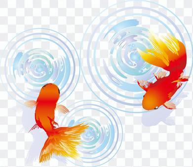 Illustration goldfish summer festival fair decoration japanese style hand drawn animals