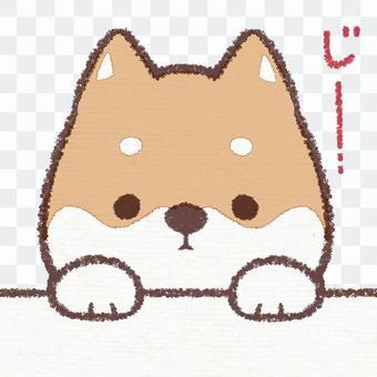 Jiie dog (letter entered version)