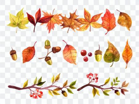 秋季植物線集