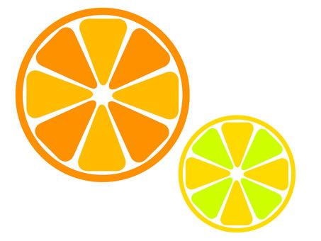 橙色橫截面 1