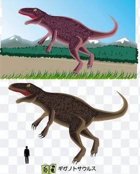 Dinosaur Giganotosaurus Theropod Carnivorous