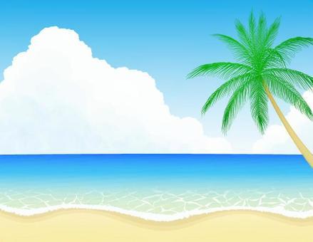 海灘和棕櫚樹1