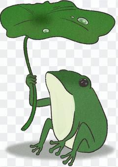 Lotus leaves and frogs