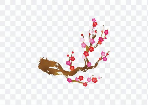 梅花分支水彩插圖