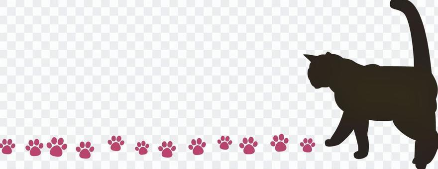 Cat's line
