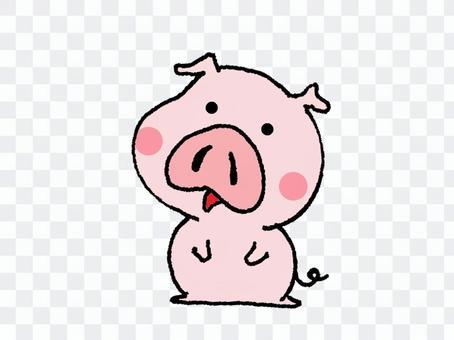 可愛的動物小豬