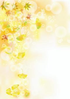 紅葉&銀杏5