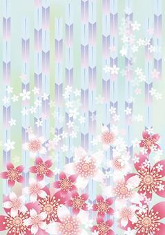 Sakura的花和Yabu 9