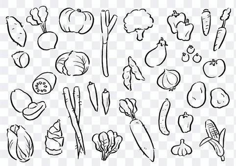手寫的插圖蔬菜集