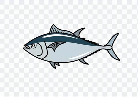 金槍魚01