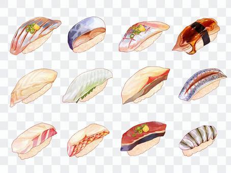 寿司のイラスト(光り物、白身)