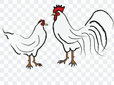 Japanese style chicken chicken rooted year
