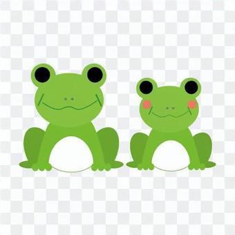 青蛙的成熟夫婦