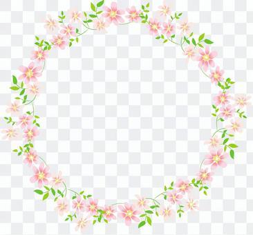 桃紅色的花框架回合