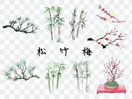 用畫筆繪製的松竹梅