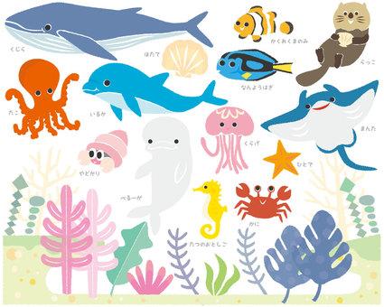 Sea creature set and frame