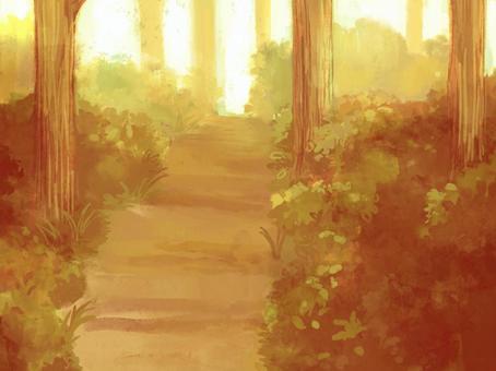 背景圖02(晚上森林)