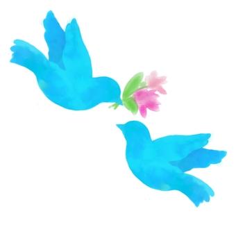 Blue bird couple