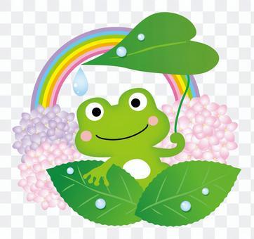 青蛙的避難所