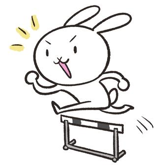 兔子跳過障礙