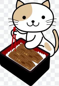 吃鰻魚的貓