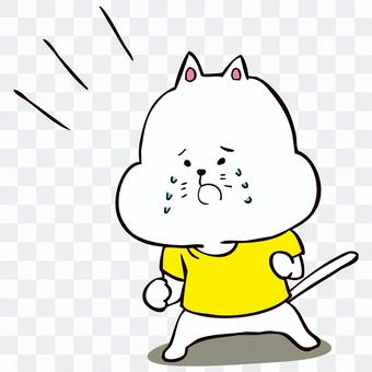 貓哭著抱怨某事