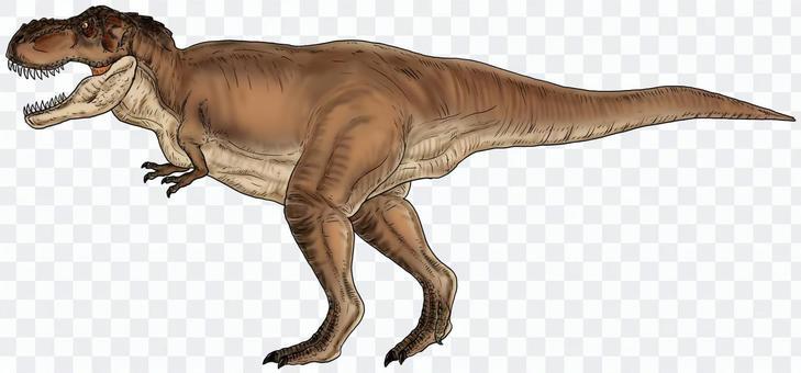 ティラノサウルス3