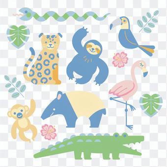 Jungle animal set