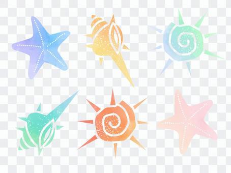 Seashell watercolor material set 02