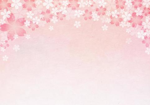 Sakura_ Washi_ background