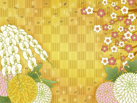 Plum orchid ping pong mum flower