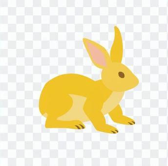 兔(月亮观看)