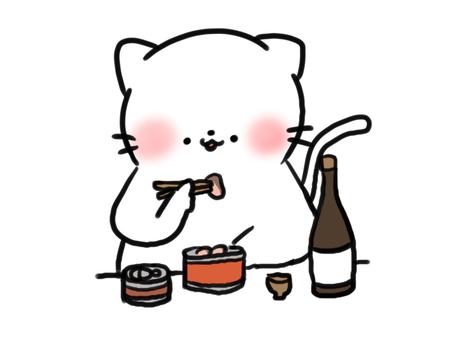 罐頭和晚上喝貓