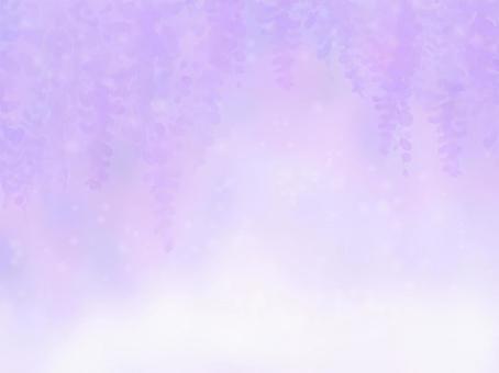 蓬鬆的紫藤花背景