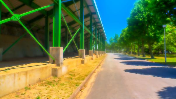 體育場後街