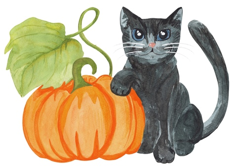 Halloween black cat drawn in watercolor