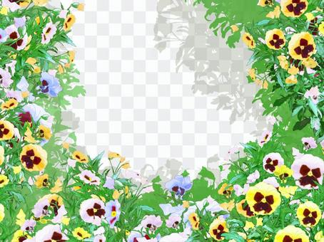 Colorful pansy frame