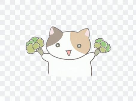 ブロッコリーと三毛猫