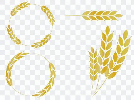 麥穗材料框線
