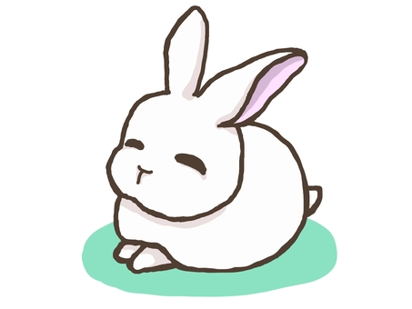 A smiling and gentle rabbit