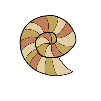 Simple ammonite shell