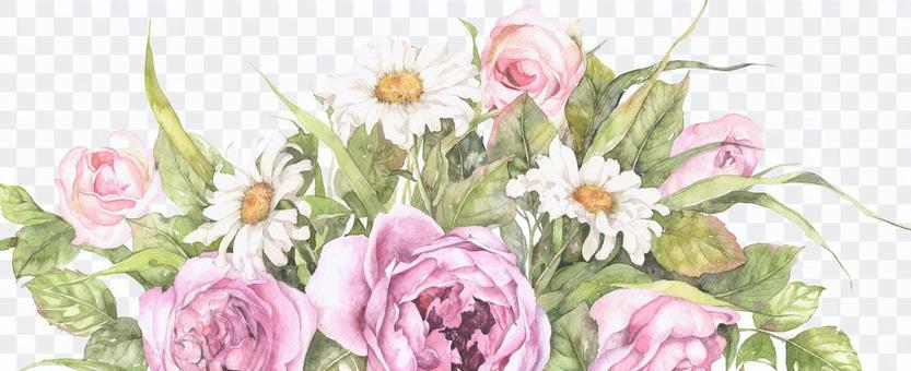 玫瑰和頭暈