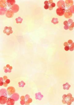 Plum _ Pastel _ Yellow _ Background