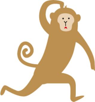奔跑的猴子
