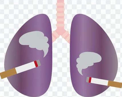 吸煙者的肺