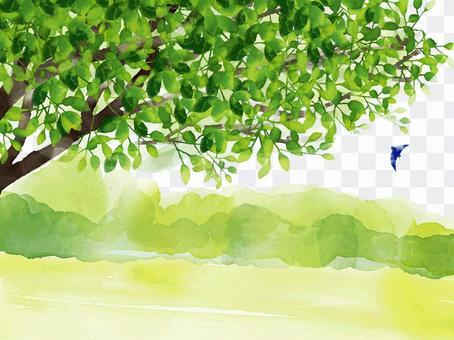 新鮮的綠色風景和鳥類水彩