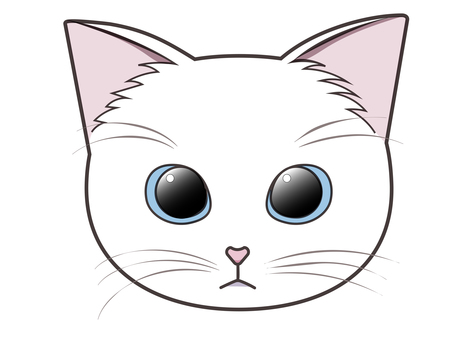 Front-facing cat face (white cat)
