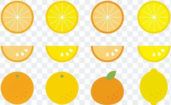 柑橘類水果,如橘子,橙子和檸檬